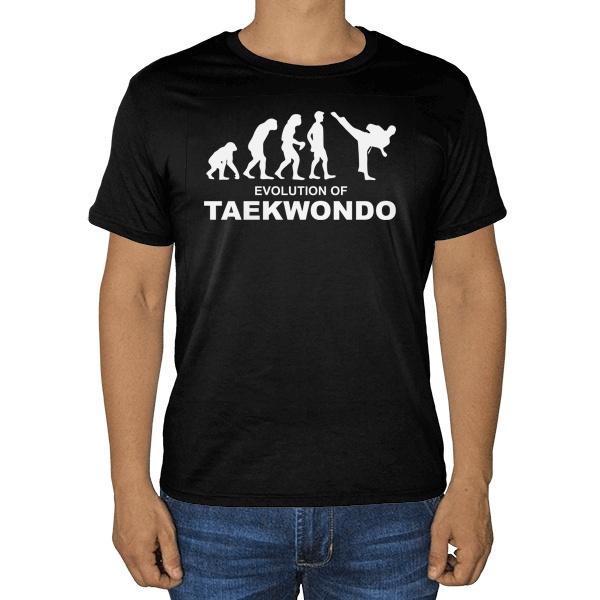 Черная футболка Эволюция тхэквондо