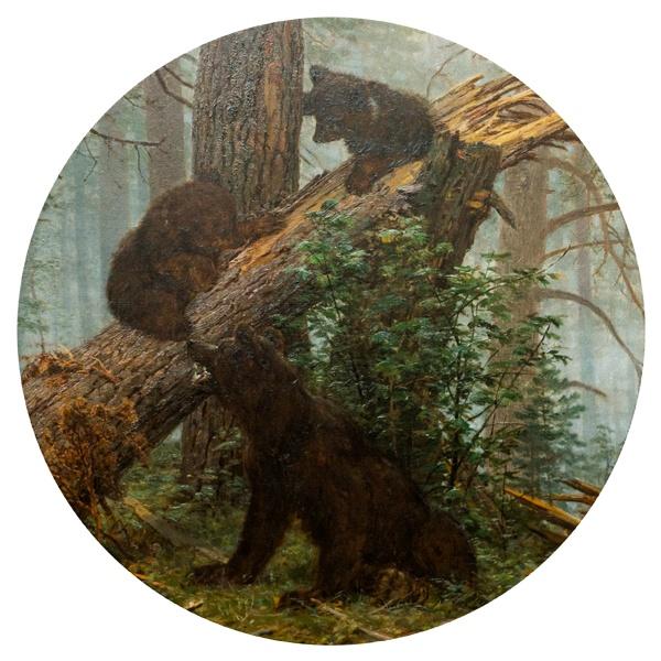 Круглый коврик для мыши Утро в сосновом лесу