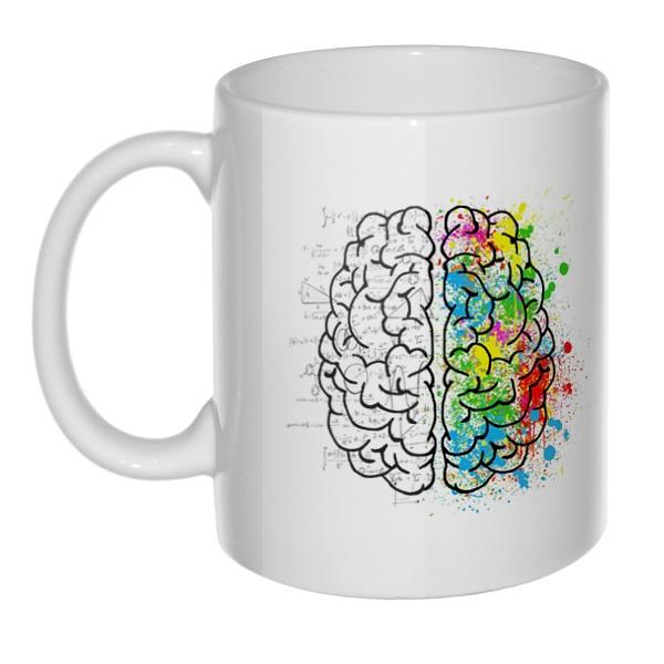 Кружка Полушария мозга