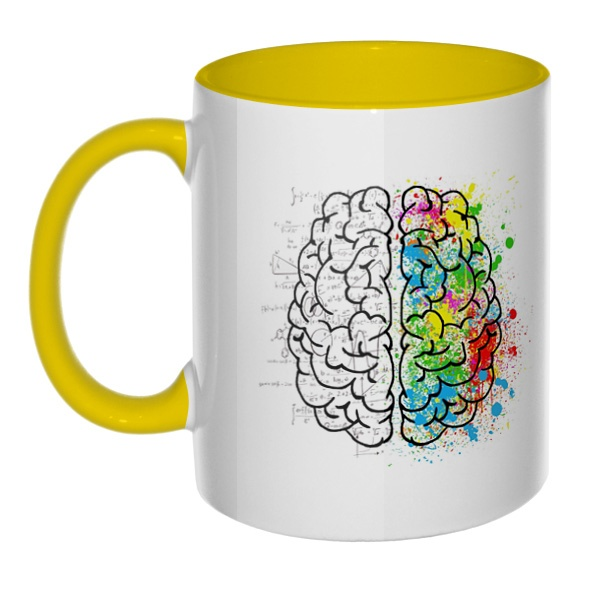 Полушария мозга, кружка цветная внутри и ручка