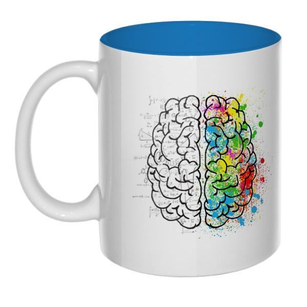 Полушария мозга, кружка цветная внутри