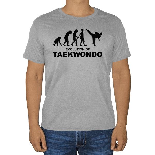 Эволюция тхэквондо, серая футболка (меланж)