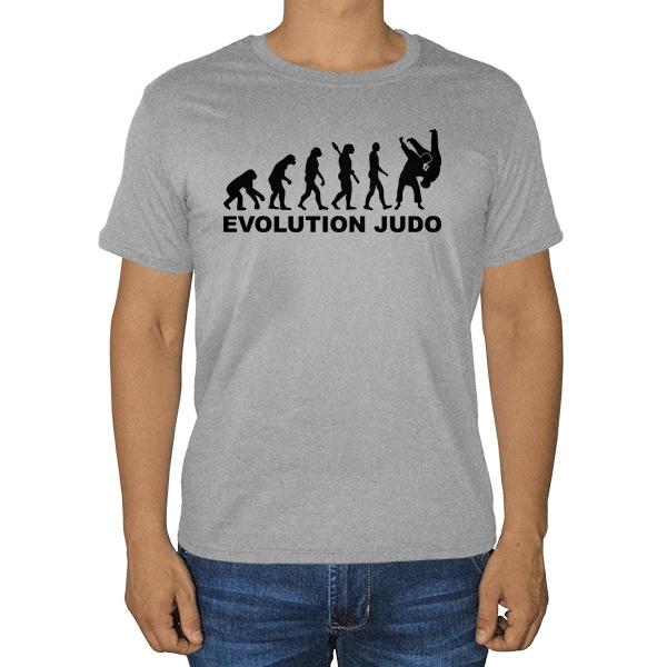 Эволюция Дзюдо, серая футболка (меланж)