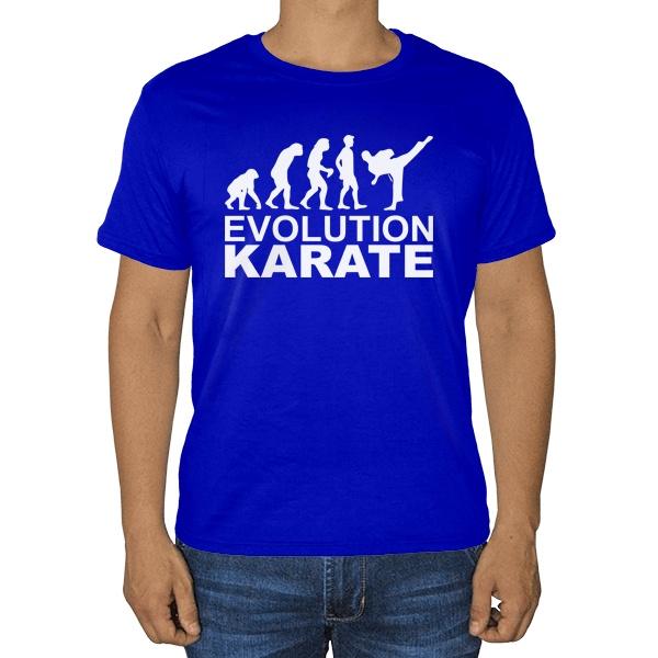 Футболка Эволюция карате