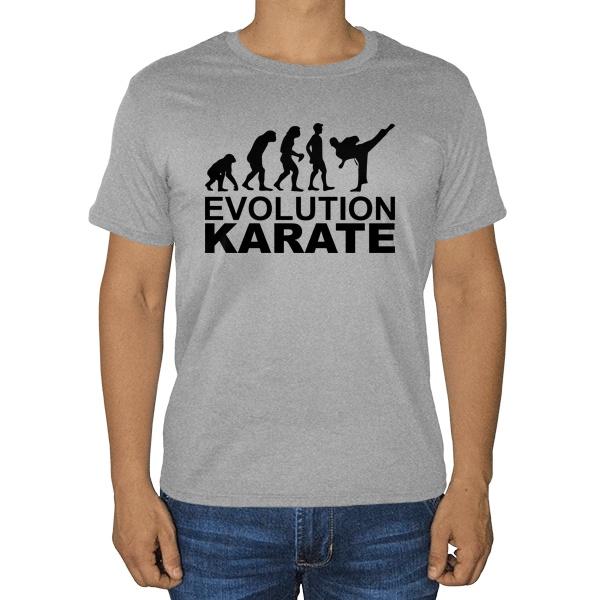 Эволюция карате, серая футболка (меланж)