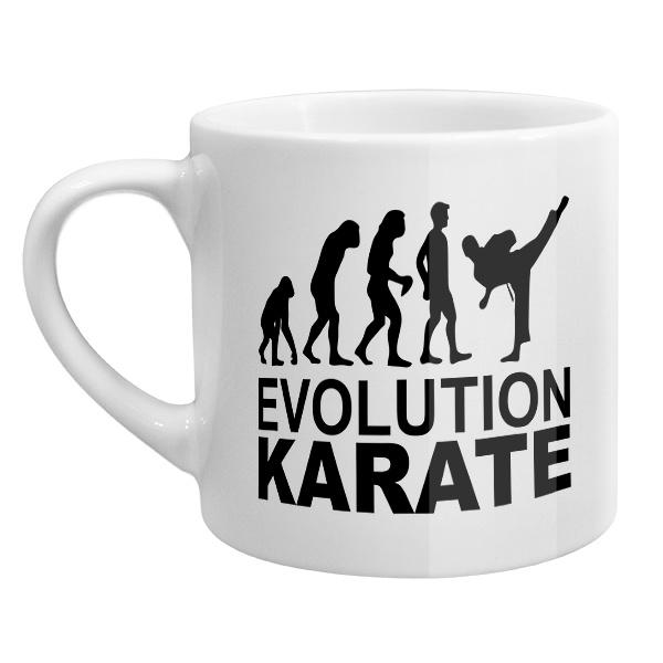 Кофейная чашка Эволюция карате