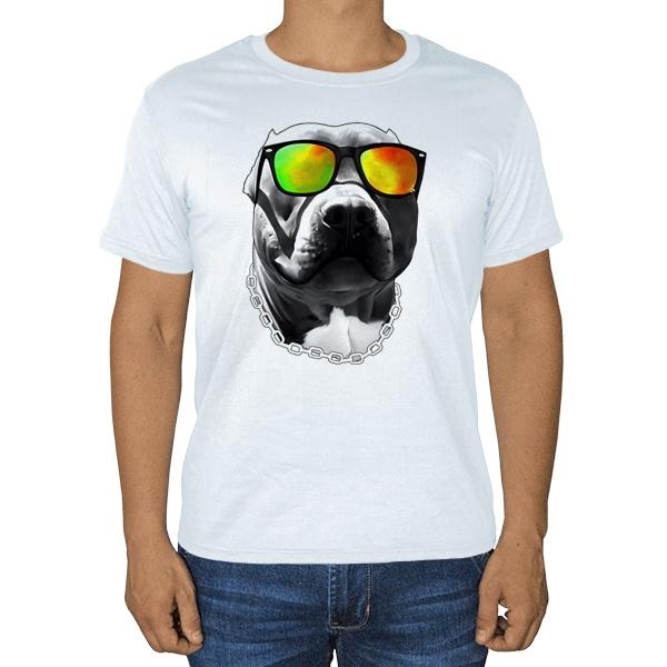 Бульдог в очках, белая футболка