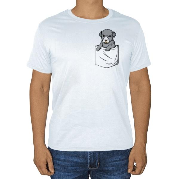 Щенок в кармане, белая футболка
